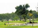 Costa Mesa Country Club - Los Lagos