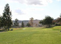 El Prado - Chino Creek Course
