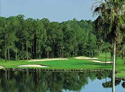 Walt Disney World Golf Complex - Palm Course