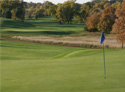 Willow Run Golf Course