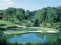 Golden Horseshoe Golf Club - Gold Course