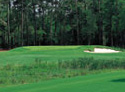 Carter Plantation Golf Club