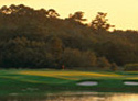 Sea Island Golf Club - Retreat Course