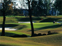 The Country Club of Landfall - Jack Nicklaus Course