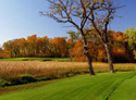Spring Hill Golf Club