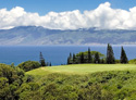 Kapalua Golf Club - Plantation Course