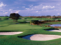 Orange County National Golf Center - Crooked Cat Course