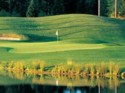 Gold Mountain Golf Course - Olympic Course