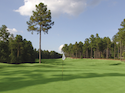 Pinewild Country Club - Magnolia Course