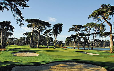 The TPC Harding Park, 16th green <br>Golfweek photo