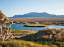 Las Vegas Paiute Resort - Wolf Course