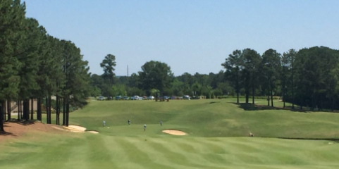 Cobblestone Park Golf Club <br>(SCGA Photo)