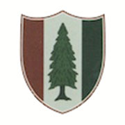 The Pine Valley logo