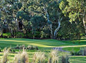 The Vines Golf Club of Reynella