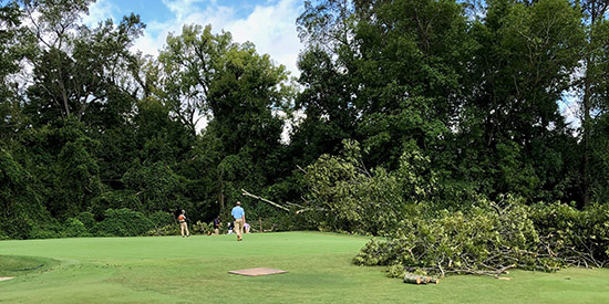 A downed tree on No. 6 green at Charlotte CC (Photo courtesy Charlotte CC)