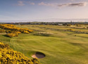 Montrose Golf Links