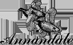 Annandale Four-Ball Championship
