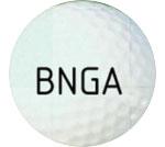 Bloomington Normal Match Play Championship